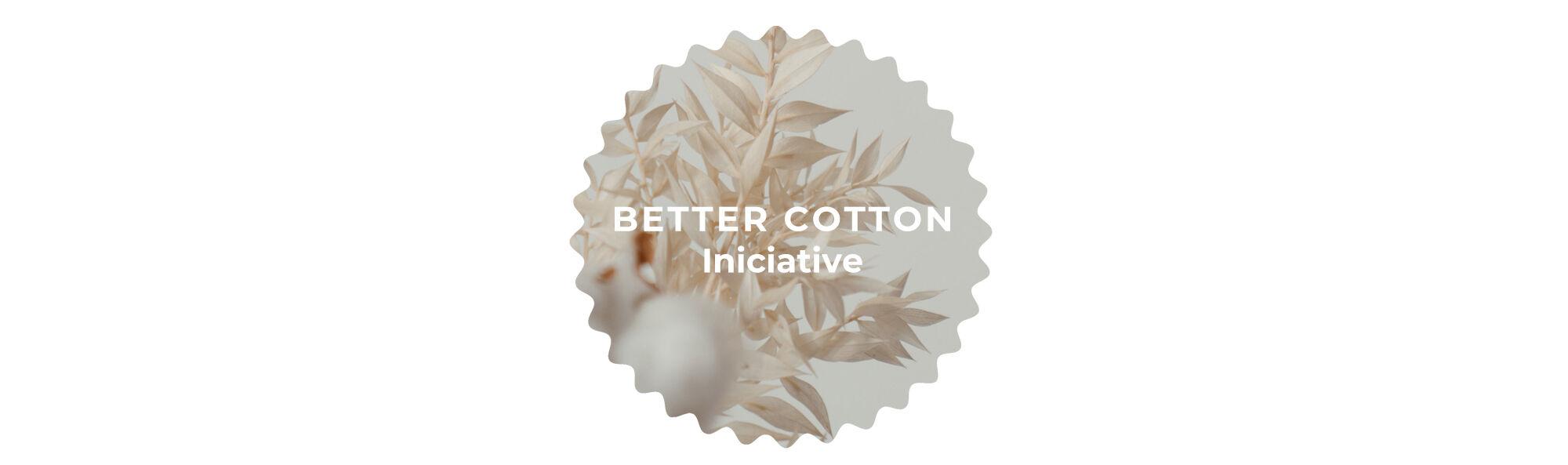 BETTER COTTON INICIATIVE